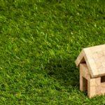 dachy zielone